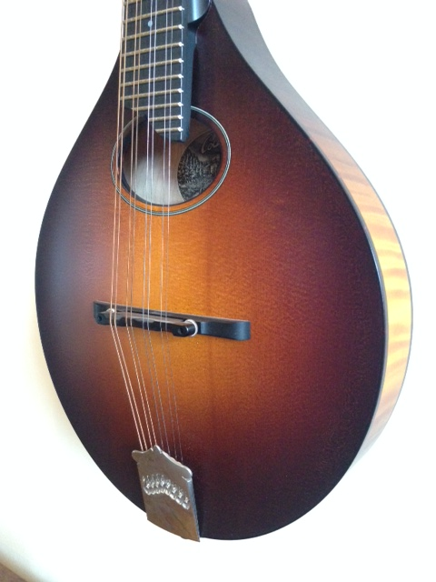 COLLINGS MT0 4