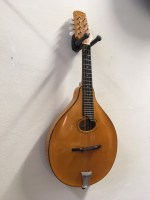 180061-old-wave-oval-a-mandolin-(1)
