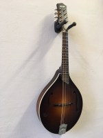 collings-mt-(2)